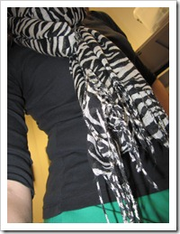 green_pants_zebra_scarf 005