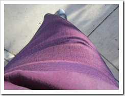 purple_skirt_purple_blouse 015